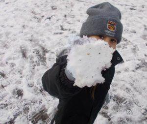 Snow PS2 HW