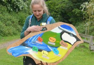 Pre-School children from Highclare School look at birds in Kingsbury Water Park